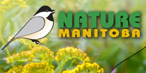 Link to Nature Manitoba